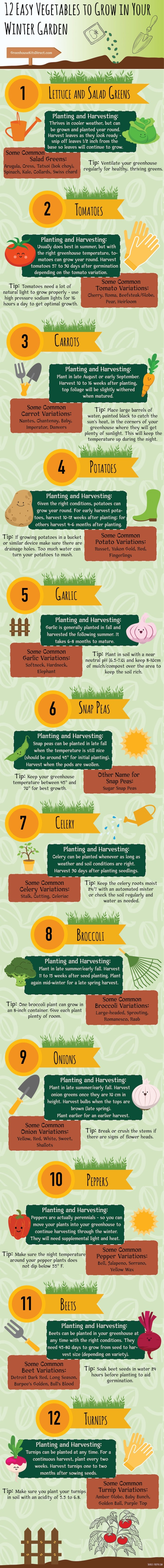winter-gardening-infographic